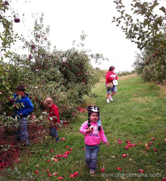 My family visiting Ditmars Orchard last fall.