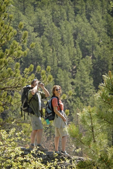 Custer State Park looks like a beautiful place to explore with my family. Photo courtesy South Dakota Tourism