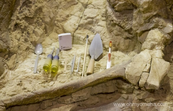 Tools used at Mammoth Site to uncover bones.