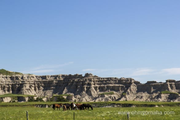 A glimpse of the countryside on the drive up from Nebraska to Wall, South Dakota.