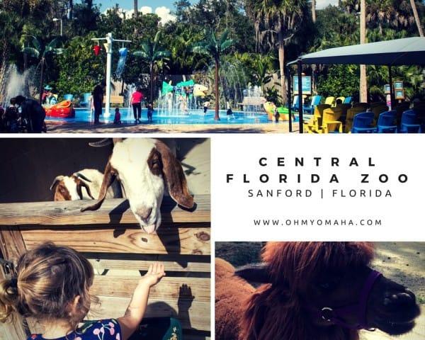 Central Florida Zoo collage