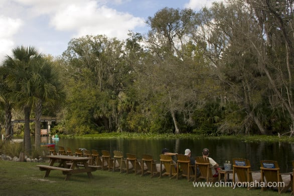 The view of the water at Wekiva Island. Yeah, I could spend a day there.