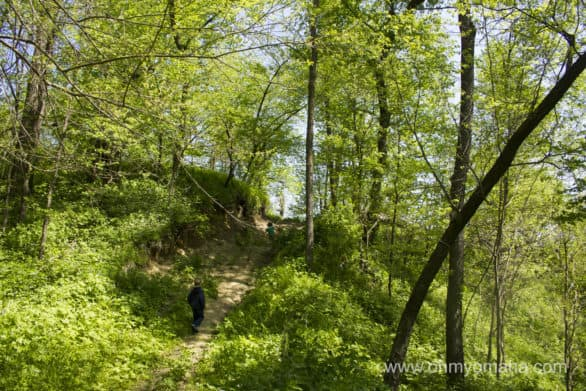 They don't call them the Loess Hills for nothing. Don't expect a flat hike at Preparation Canyon State Park.