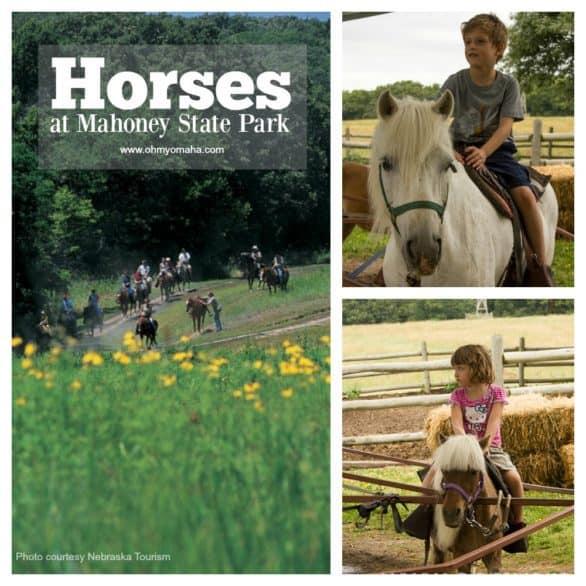 Mahoney Horse Collage