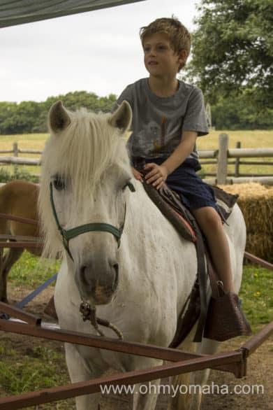 Farley on a not-so-little pony ride. Pony rides at Mahoney State Park are $6 seasonally.