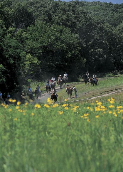 Horse trail rides at Mahoney State Park are $18 for ages 6 and older. Photo courtesy Nebraska Tourism