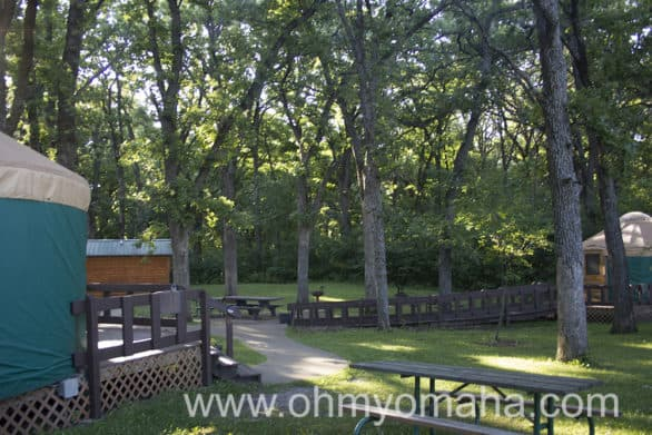 There are only two yurts in Iowa and you're looking at them. You can find them at McKintosh State Park.