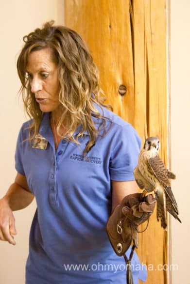 Kids can ask questions and view birds up close at Fontenelle Forest.